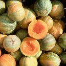 Small Emerald Gem Heirloom Melon Cucumis Melo - 25 Seeds