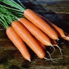 French Heirloom St. Valery Carrot Carota dauca – 100 Seeds