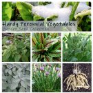 Perennial Heirloom Vegetables Cold Hardy Seed Collection - 6 Varieties