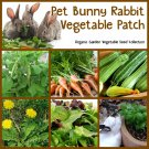 Pet Bunny Rabbit Organic Vegetable Patch Seed Collection - 6 Varieties