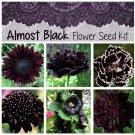 Naturally Dark Almost Black Flower Seed Collection - 6 Varieties