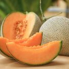 Hales Best Jumbo Heirloom Cantaloupe Cucumis melo cantalupensis - 30 Seeds Fruits