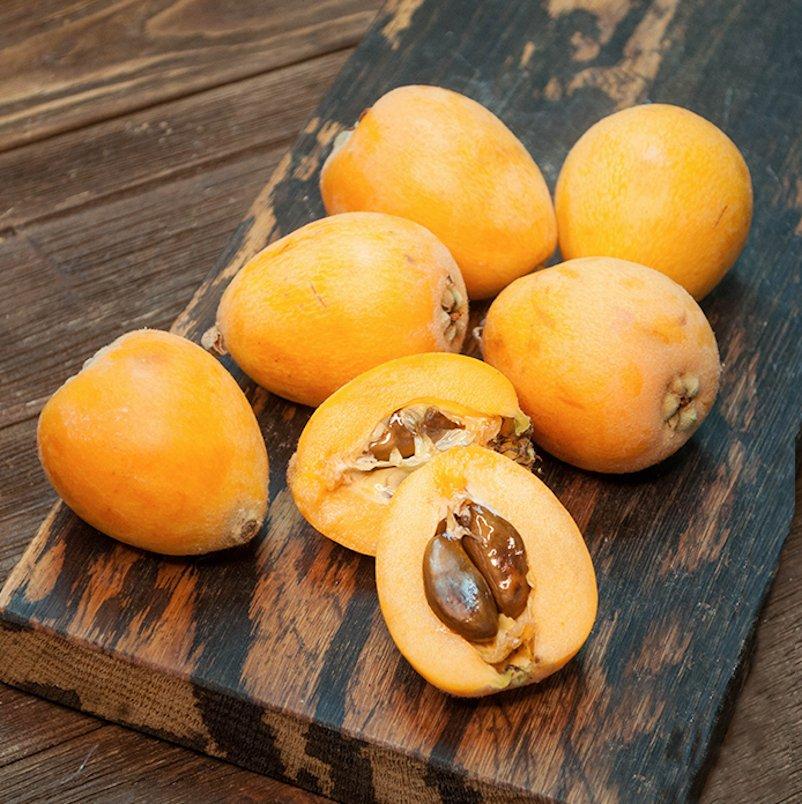Japanese Plum Loquat Fruit Nisperos Eriobotrya Japonica � 5 fresh Seeds
