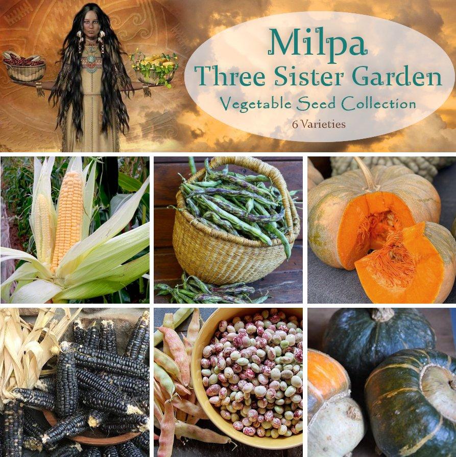 Milpa Three Sister Garden Heirloom Seed Collection - 6 Varieties