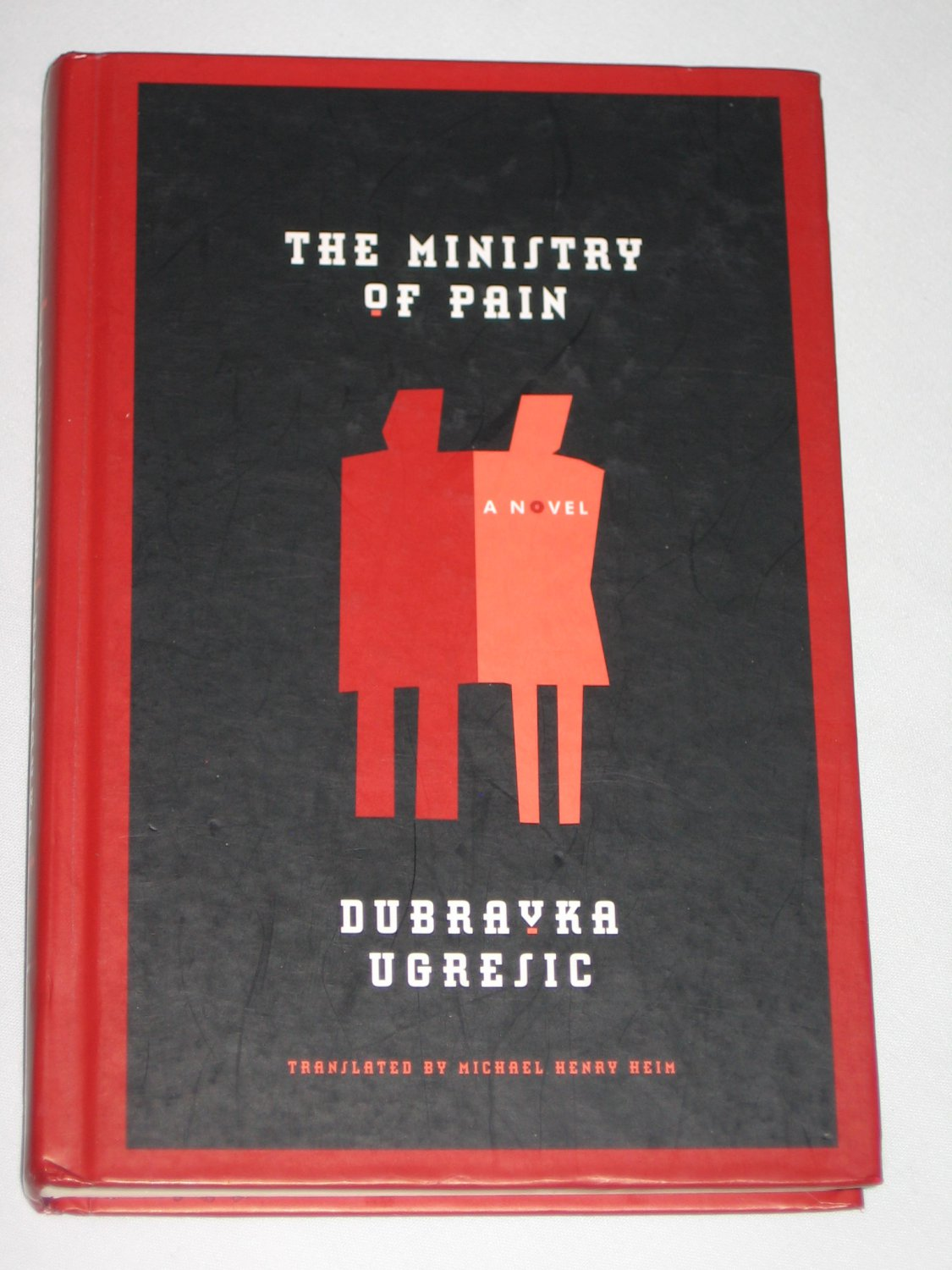 The Ministry of Pain by Dubravka Ugresic 2006 First Edition Hardcover Book