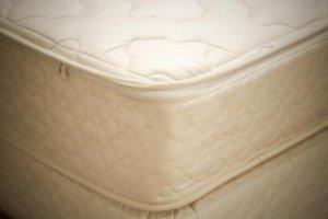 "9"" Organic Full Pillowtop Mattress - Atlantis"