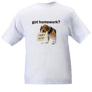 got homework? Ash Grey T-Shirt