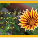 You are in God's heart today, and your life is in His hands - 5 Folded Notecards