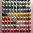 Robison-Anton Top 100 Colors Rayon Machine Embroidery Thread Set (100 mini king cones, 1000 meters)
