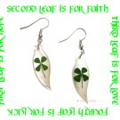BEAUTIFUL FOUR LEAF CLOVER SHELL EARRINGS ECFLC-SH4000