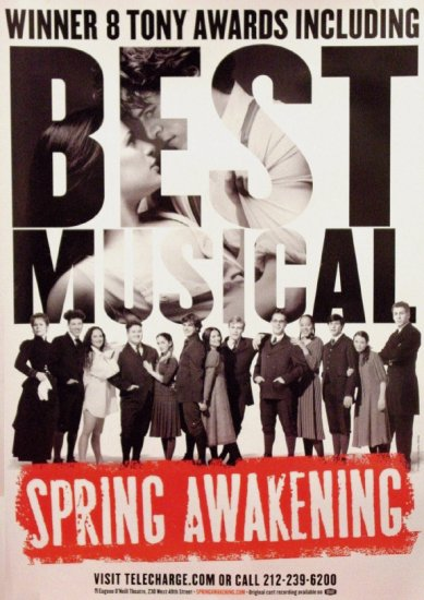 SPRING AWAKENING Original Broadway Theater Poster * CAST * 3' x 4' Rare 2007 Mint