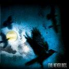 Dean Koonz WHAT THE NIGHT KNOWS Original Book Poster Set 2' x 3' Rare 2010 Mint
