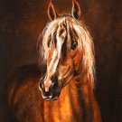 ★ Original Oil Portrait Painting AVELIGNESE Horse Art ★