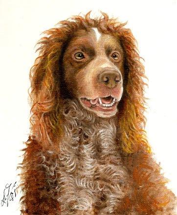Original Oil DOG Portrait Painting PONT-AUDEMER SPANIEL
