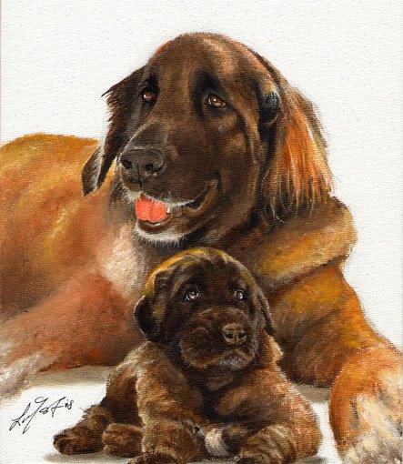 * Original Oil DOG Portrait Painting LEONBERGER w PUPPY