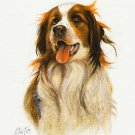 ★ Original DOG Art Oil Portrait Painting KOOIKERHONDJE