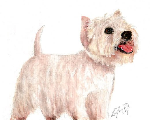 � Original Oil DOG Portrait Painting Art WESTIE Artwork
