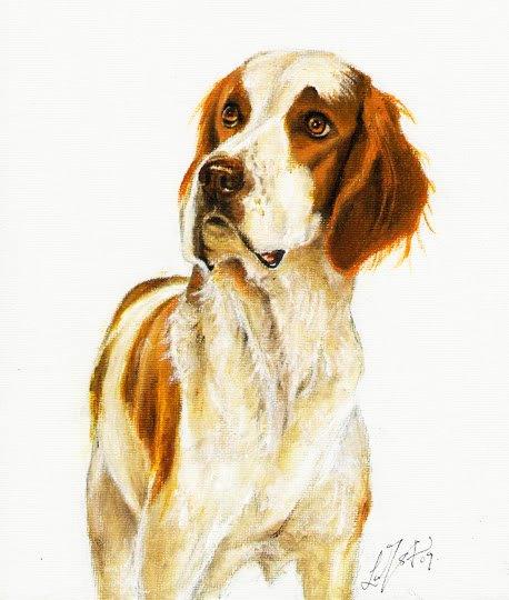 � Original DOG Oil Portrait Art Painting IRISH SETTER �