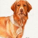 ★ Original Oil DOG Portrait Painting Art HOVAWART ★
