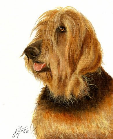 � Original Oil DOG Portrait Painting Artwork OTTERHOUND