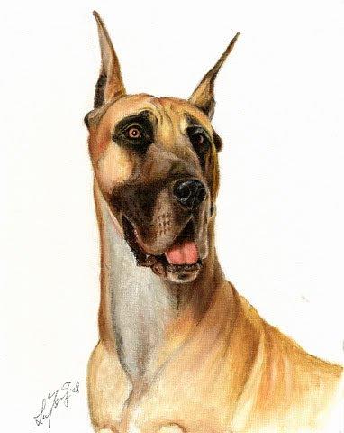 � Original Oil Art DOG Portrait Painting GREAT DANE �