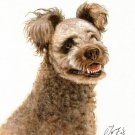 ♥ Original Oil Art DOG Portrait Painting Artwork PUMI ♥