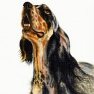 ★ Original Oil DOG Art Portrait Painting ENGLISH SETTER