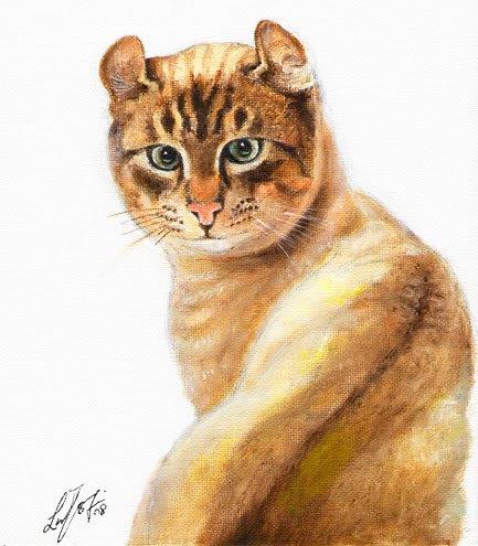 � Original Oil Portrait Painting Art AMERICAN CURL CAT