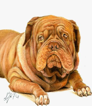 � Original Oil DOG Portrait Painting BORDEAUX MASTIFF �