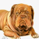 ★ Original Oil DOG Portrait Painting BORDEAUX MASTIFF ★