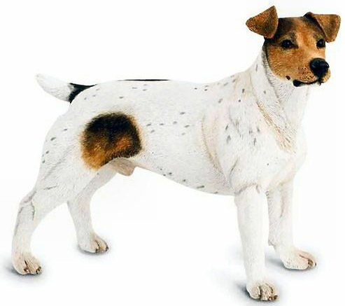 � New COUNTRY ARTISTS Dog JACK RUSSELL TERRIER Figurine