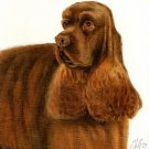 ♥Original DOG Portrait Painting AMERICAN COCKER SPANIEL