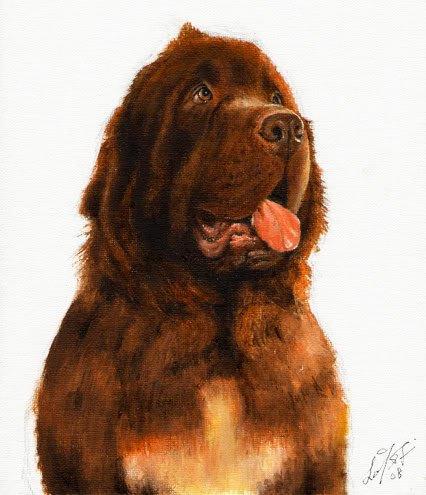 � Original Oil DOG Portrait Painting Art NEWFOUNDLAND �