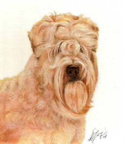 �Original Oil DOG Portrait Painting Art WHEATEN TERRIER
