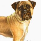 ★ ORIGINAL Oil DOG Portrait Painting BULLMASTIFF Art ★