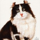 ★ Original Oil Portrait Painting Art BLACK & WHITE CAT