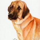 * Original Oil DOG Portrait Painting ANATOLIAN SHEEPDOG