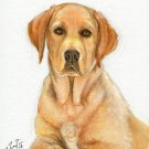 ★ ORIGINAL Oil DOG Portrait Painting LABRADOR RETRIEVER