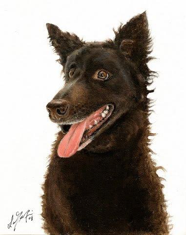 � Original Oil Art DOG Portrait Painting Artwork MUDI �