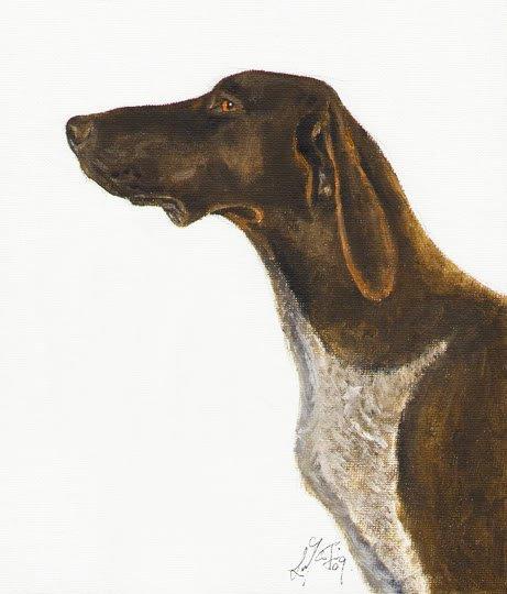 � Original Oil DOG Portrait Painting GERMAN POINTER Art