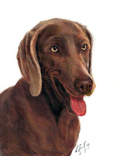 � Original Oil DOG Portrait Painting Art WEIMARANER �