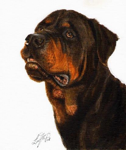 � Original Oil DOG Portrait Painting ROTTWEILER Artwork