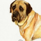 ★ Original Oil DOG Portrait Painting Artwork MASTIFF ★