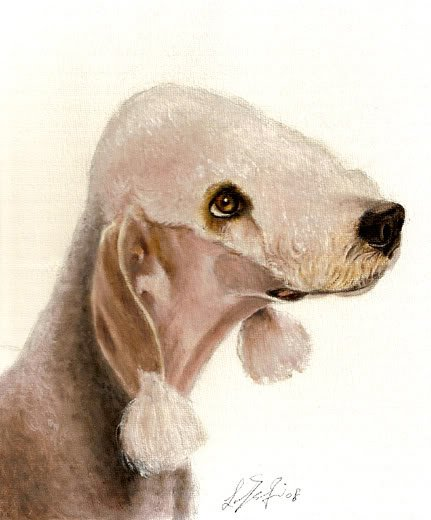 � Original Oil DOG Portrait Painting BEDLINGTON TERRIER
