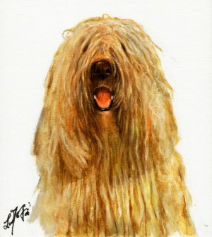 � Original Oil DOG Portrait Painting Art KOMONDOR �