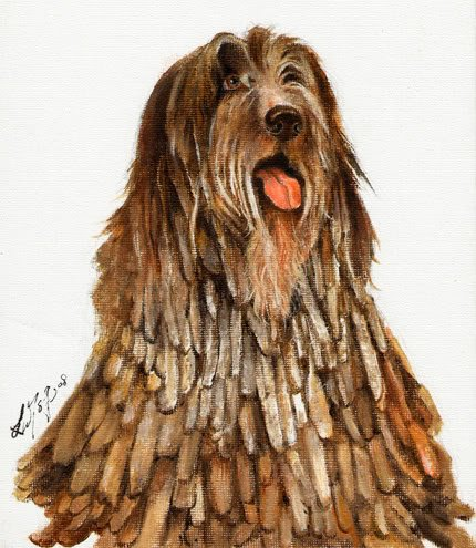 �Original Oil DOG Portrait Painting BERGAMASCO SHEEPDOG