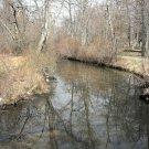 Creek 8X10