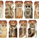 Grungy Vintage OWL Tags...Striking... Digital Collage Sheet