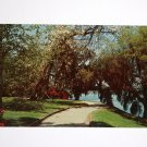Post Card Highway 61 Summerville Road Charleston South Carolina