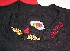 Black Long Sleeve Shirt with Embroidered Collar